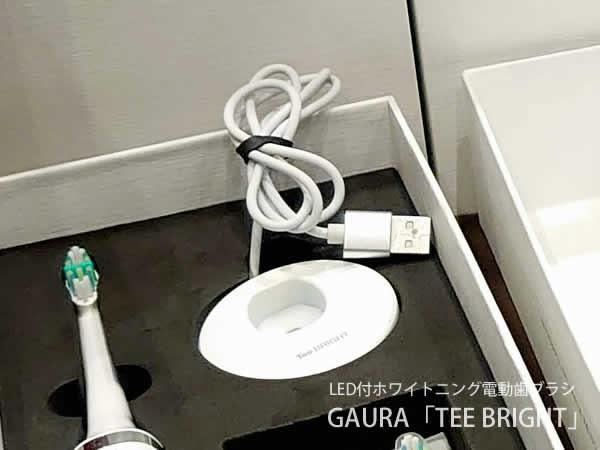 ガウラ電動歯ブラシの充電器
